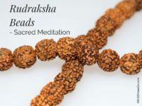 Rudraksha Beads | DharmaMalas.com