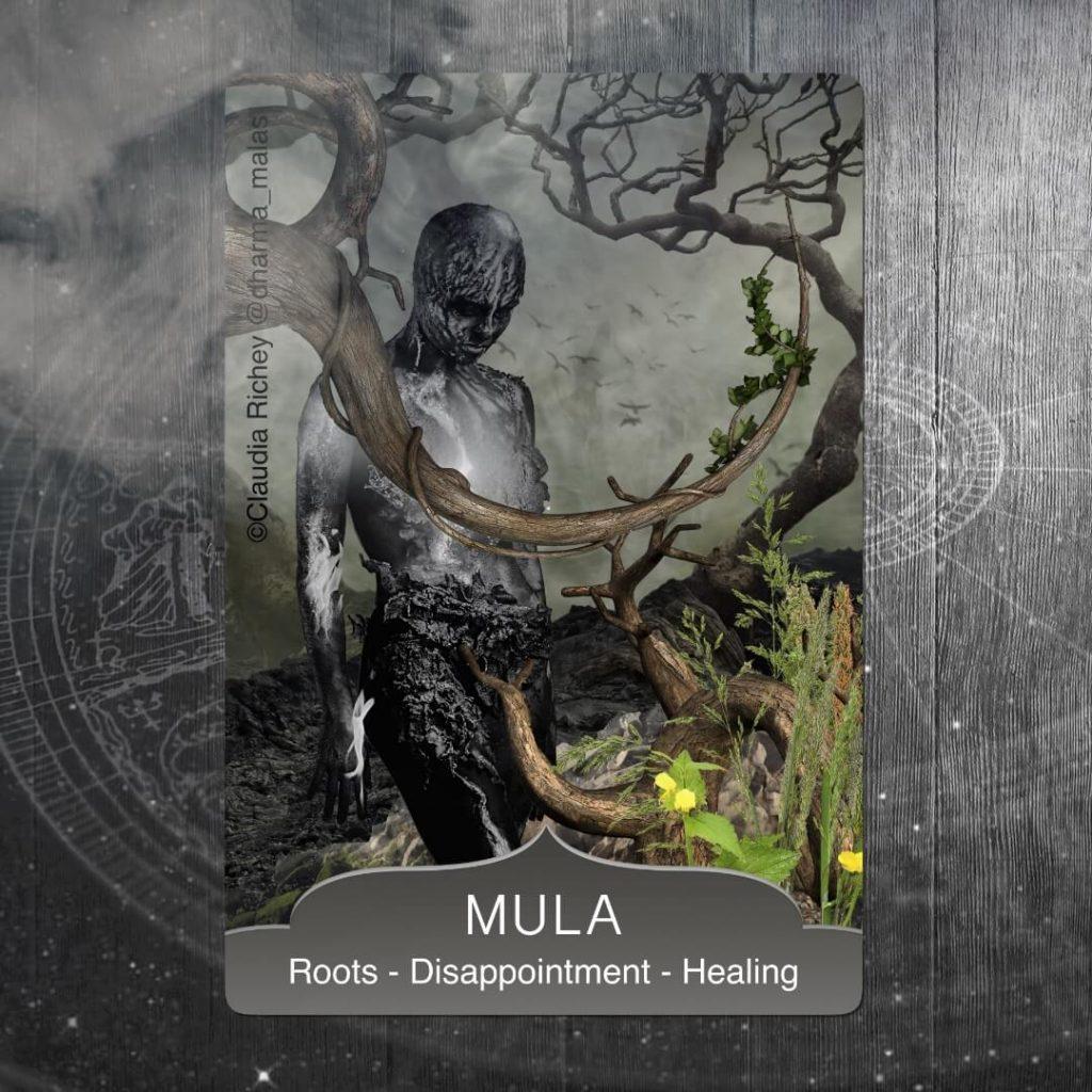 Full Moon in Mula Nakshatra - June 17, 2019 | DharmaMalas com